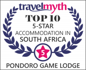 Top 10 five star accommodation in South Africa Pondoro Safari Game Lodge