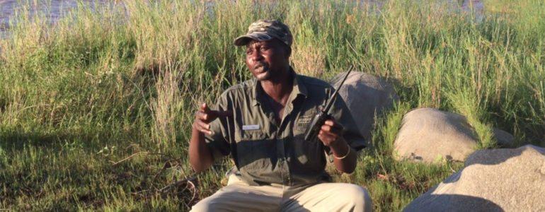 Wildlife tracker at Pondoro
