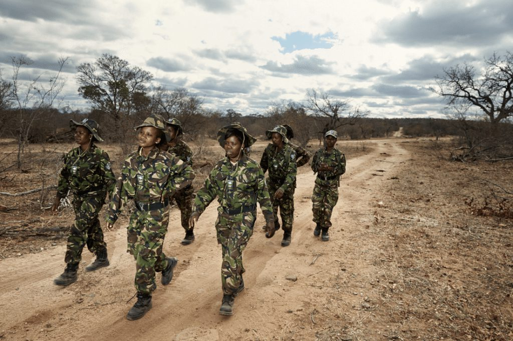 Black mamba anti poaching at Pondoro